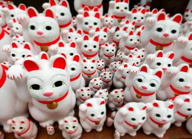 Thám tử thú cưng - nghề mới nổi ở Nhật Bản