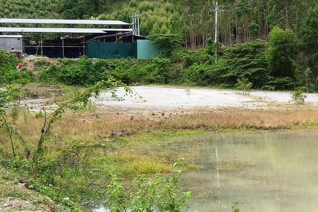 Nước thải chứa trong ao tạm bợ, gây ô nhiễm môi trường.