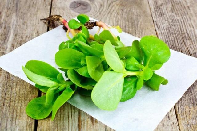 10 lợi ích tuyệt vời của rau sam - 3