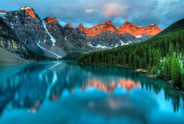 Những khu rừng đẹp nhất thế giới - 1