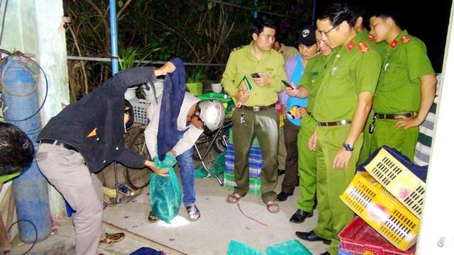 Lực lượng chức năng thu giữ động vật hoang dã trong nhà bà Thuận