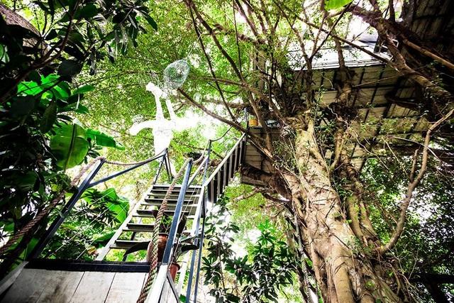 Quần thể trên cây của nghệ sĩ Đào Anh Khánh