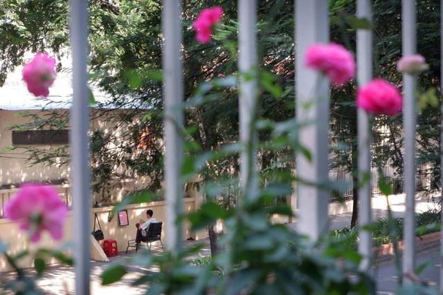 Giả lập phim CLASSIC CHROME chụp một góc phố phường bình yên lúc 8 giờ 30 sáng.