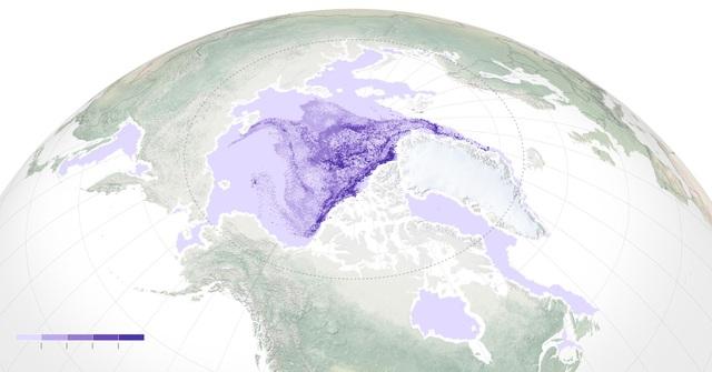 Băng lâu năm ở Bắc Cực đang biến mất - 1