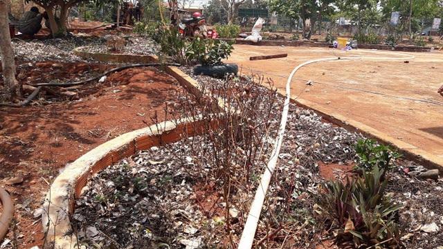 Dù đã thu hàng triệu đồng tiền chăm sóc và phân bón cho cây từ học sinh nhưng khuôn viên trường vẫn hoang tàn