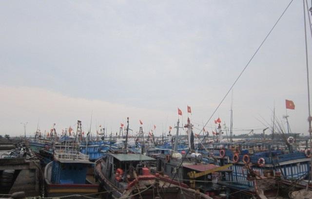 Thanh Hóa khuyến khích, động viên ngư dân vươn khơi, bám biển