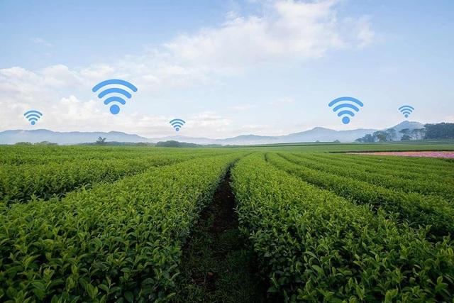 Hầu hết các thao tác nghề nông như kiểm soát việc phun thuốc sâu, dẫn nước tưới tiêu, thu hoạch, trồng trọt bằng mạng lưới điện thoại thông minh