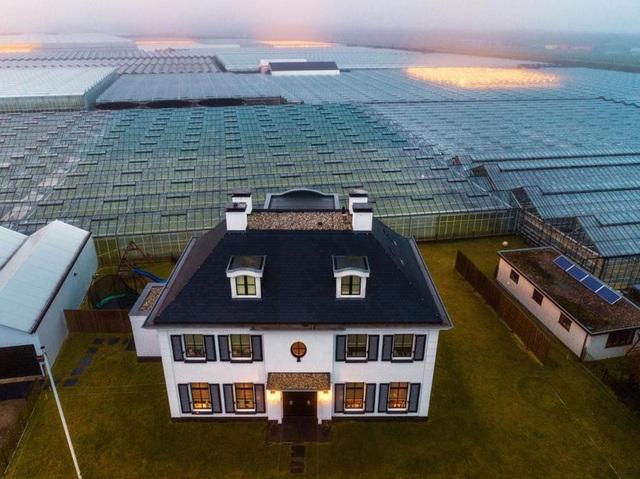 Hà Lan là nước dẫn đầu toàn cầu trong lĩnh vực công nghệ hóa nông nghiệp