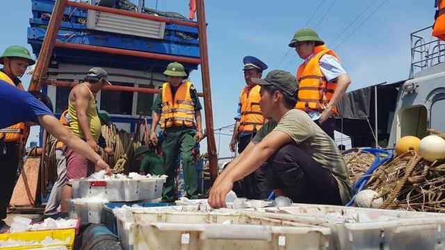 Tàu giã cào là nỗi ám ảnh của các ngư dân