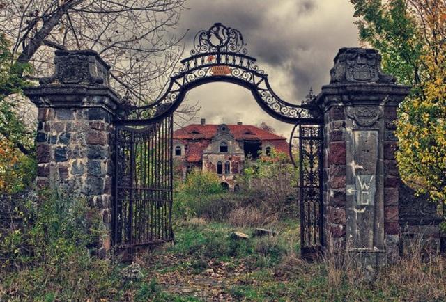Nơi đây từng là cung điện ở Ba Lan, nhưng hiện tại nó giống như một khu rừng.
