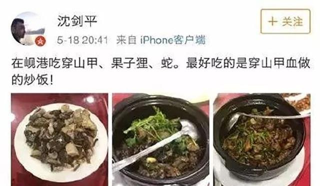 Những món nhậu làm từ thịt tê tê và cầy hương mà ông Shen ăn tại Đà Nẵng được ông đăng tải trên Weibo. (Nguồn: SCMP)