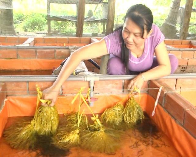Chị Phạm Thị Kiều Em bên mô hình nuôi lươn sinh sản trong bể lót bạt.
