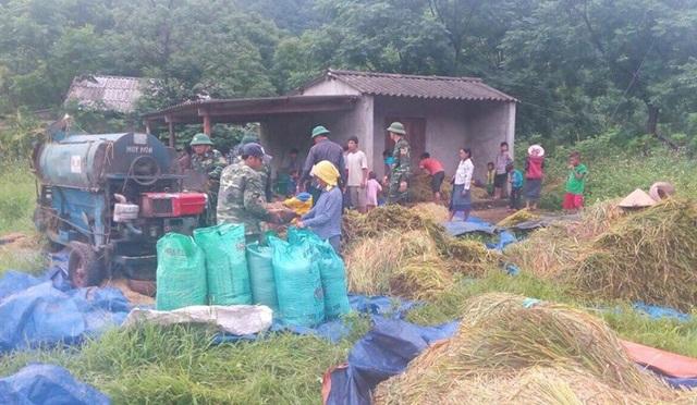 Những người lính biên phòng giúp dân bản Ka Ai gặt, tuốt lúa