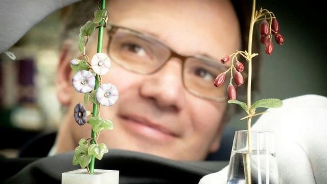 Hai cành hoa quý cất trong hộp giày có giá 15 tỷ đồng - 2