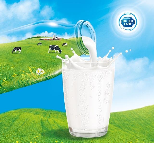 Quy trình khép kín, nghiêm ngặt mang đến sự an toàn cho nguồn sữa đầu vào của Cô Gái Hà Lan