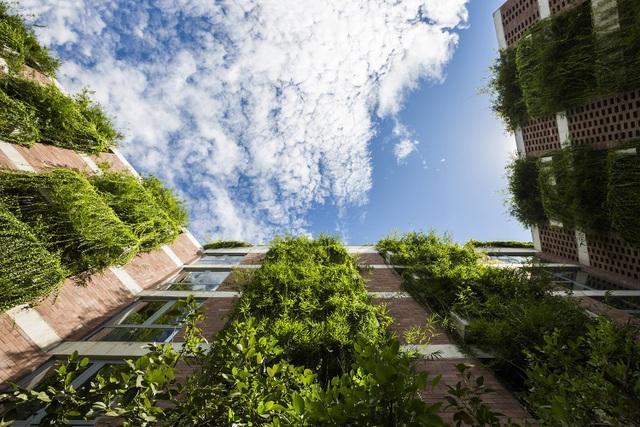 Mặt tiền của khách sạn được lát đá sa thạch của địa phương, màu của đá và màu cây xanh đan xen tạo cảm giác vô cùng hài hòa. Hệ thống cây xanh được bố trí khéo léo dọc theo toàn bộ mặt tiền của khách sạn còn có tác dụng cách nhiệt, tạo bầu không khí trong lành cho không gian bên trong. Các thiết kế của khách sạn được tối ưu để sự dụng nguồn năng lượng mặt trời và nguồn gió tự nhiên để giảm thiểu việc sử dụng máy điều hòa không khí.