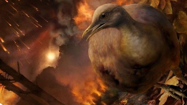 Tổ tiên của loài chim sống sót qua thiên thạch rơi như nào? - 1