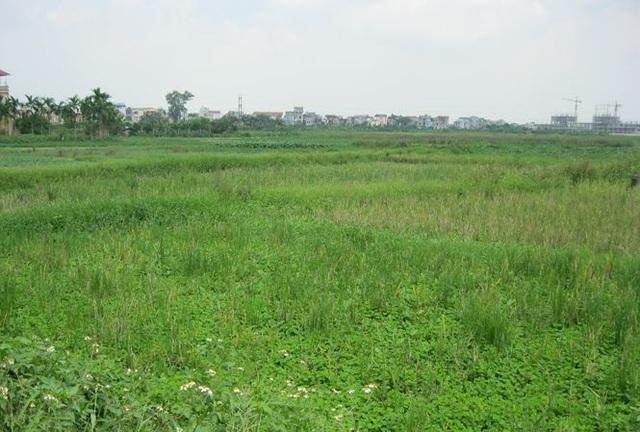 Tổng số tiền dự kiến thu về từ đấu giá đất của Hà Nội khoảng hơn 53 nghìn tỷ đồng.