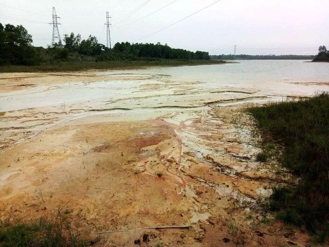 Một diện tích lớn hồ Bàu Cúi đang bị bức tử từng ngày