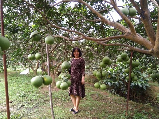 Hè đến rủ nhau về Đồng Nai ghé thăm làng bưởi xanh mướt mát - 5