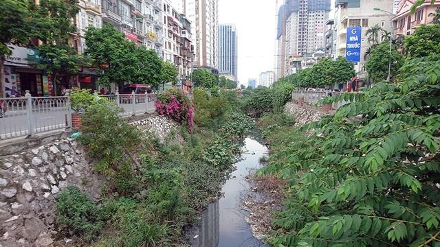 Được xây dựng từ năm 2014, đến nay cây dại đã phủ kín lòng mương chạy dọc đường Mạc Thái Tổ (Yên Hòa, Cầu Giấy, Hà Nội). Đây cũng là điểm nóng ô nhiễm ở khu vực mới hình thành khu đô thị khang trang.