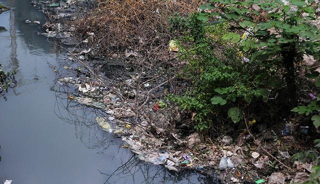 Dòng nước đen kịt, rác thải nổi đầy trên bề mặt.