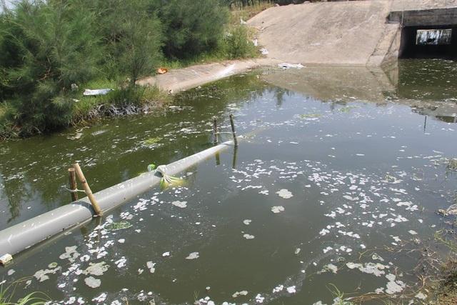 Trên mặt nước thải còn có các lớp vàng, bọt trắng bốc mùi hôi thối rất khó chịu