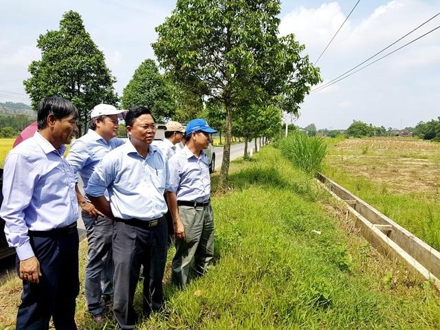 Lãnh đạo tỉnh Quảng Nam thị sát vùng trồng dâu ở các bãi bồi ven sông