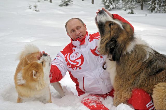 Chó cũng là con vật thân thiết với Tổng thống Putin. (Ảnh: Getty)