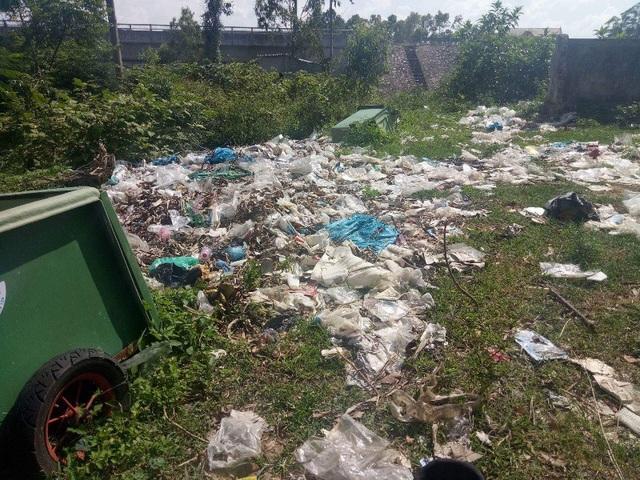 Mặc dù rác tràn ngập khu vực chợ Đại Trạch từ lâu nay nhưng Chủ tịch UBND xã Đại Trạch lại tỏ ra khá bất ngờ trước tình trạng này