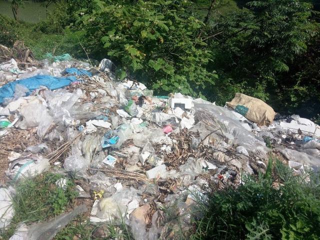 Rác thải tại chợ Đại Trạch đang uy hiếp sông Dinh từng ngày