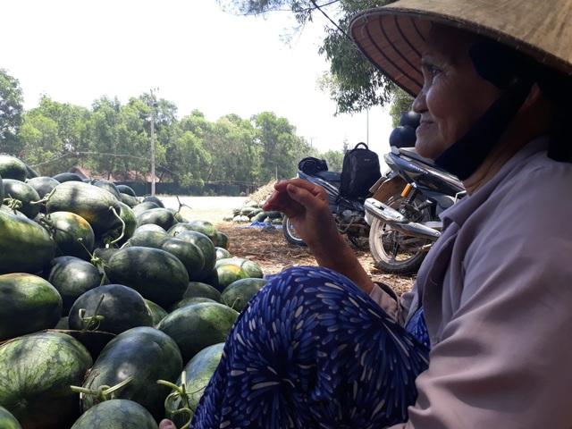 Bà Lê Thị Đào bó gối nhìn đống dưa hấu chưa có người mua
