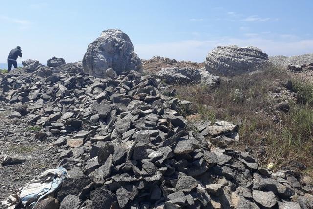 Dù UBND tỉnh Quảng Ngãi đã có văn bản hỏa tốc chỉ đạo huyện Lý Sơn phải khoanh vùng bảo vệ nhưng san hô hóa thạch hiện vẫn nằm lăn lóc cùng phế thải