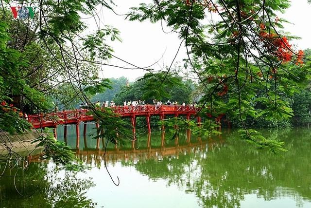 Hoa phượng thắp lửa bên Hồ Gươm - 8