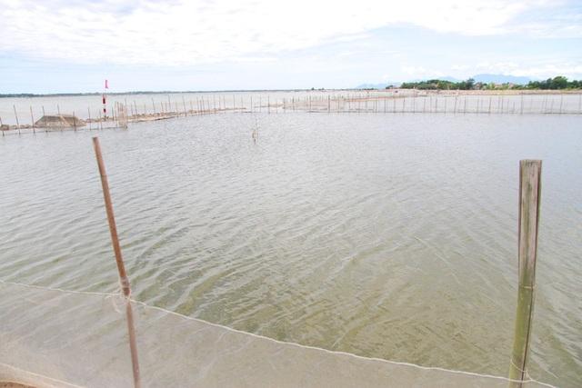 Các khu đất của ngư dân được giới hạn bởi cọc tre và lưới.