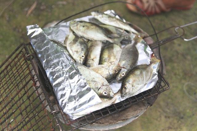 Món cá kình trứ danh đầm phá Tam Giang