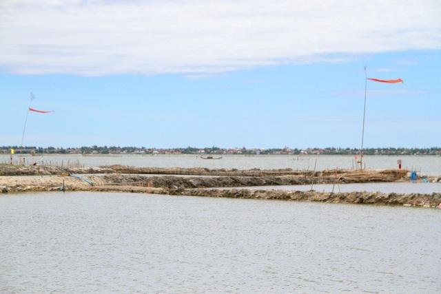 Các cây nêu treo cờ đỏ đánh dấu từng vùng đầm của mỗi hộ ngư dân
