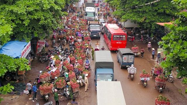 Mấy ngày gần đây khi mùa thu hoạch vải ở huyện Lục Ngạn (Bắc Giang) vào chính vụ, tại thị trấn Chũ luôn nhộn nhịp cảnh xe máy ô tô lớn nhỏ đi bán hoặc thu mua vải.