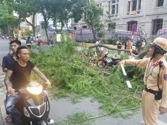 Ngay sau khi nhận được tin báo, lực lượng CSGT và lực lượng chức năng đã đến để phân luồng giao thông, giải quyết sự việc.