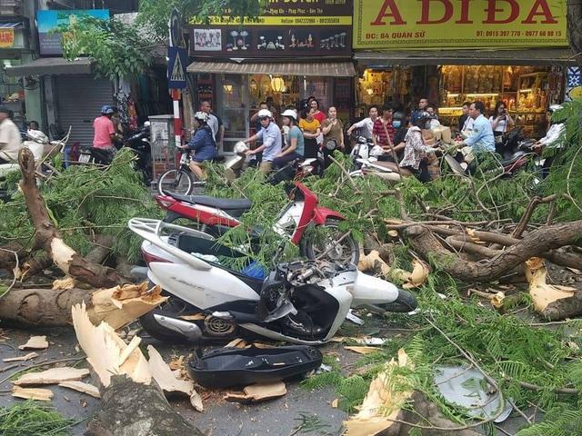 Hà Nội: Cây cổ thụ bật rễ, đè trúng 5 người trên phố Quán Sứ - 1