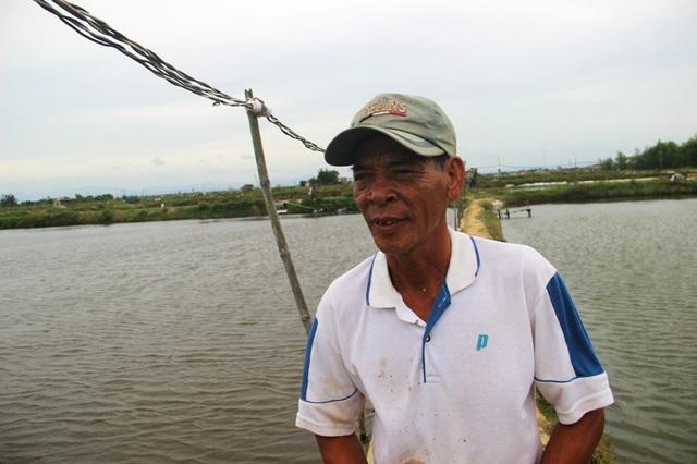 Theo ông Nguyễn Thành Minh, hiện giá tôm đang thấp nên nhiều hộ không dám bán vì lo lỗ vốn