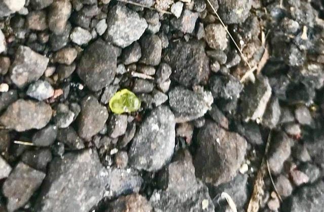 Giá thành của đá olivin chất lượng cao là khoảng 450 USD cho mỗi carat.