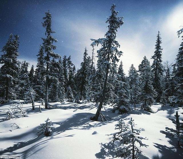 Phần Lan - quê hương của ông già Noel còn được gọi là xứ sở nghìn hồ hay thiên đường cổ tích bởi cảnh sắc bốn mùa như trong tranh
