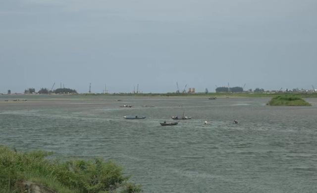 Con lịch sống ở vùng nước lợ hạ lưu sông Trà Khúc, người dân địa phương gọi đây là vùng nước chè hai. Những lúc nông nhàn người dân các xã Nghĩa Phú, Tịnh An, Tịnh Khê (TP. Quảng Ngãi) lại đi cào lịch kiếm thêm thu nhập.