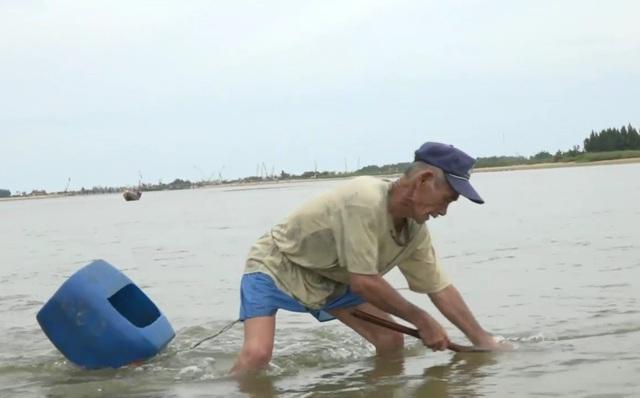 Vào mùa này, con lịch còn nằm sâu trong cát nên việc cào lịch khá khó khăn. Trung bình mỗi ngày người cào lịch có thể bắt được từ 2 - 3 kg. Với giá bán 80 - 100 ngàn đồng/kg thì người dân có thể kiếm thêm từ 200 - 300 ngàn đồng mỗi ngày