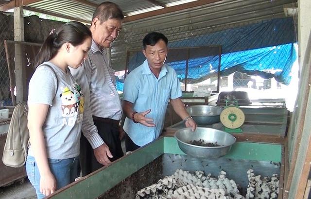 Anh Trương Thanh Dũng (phải) - chủ trang trại giới thiệu về kỹ thuật nuôi dế thương phẩm. Ảnh: Trúc Quỳnh (Báo Long An).