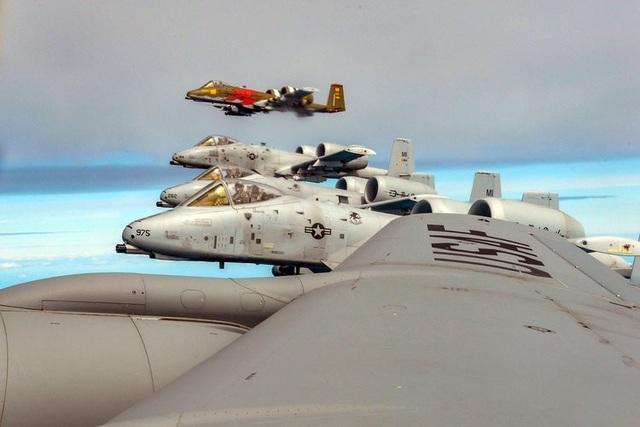 4 máy bay A-10 Thunderbolt II bay gần máy bay tiếp dầu KC-135 Stratotanker trong cuộc tập trận Saber Strike ở Latvia ngày 8/6. Cả 4 máy bay A-10 đều được tiếp dầu trên không, cho phép chúng nhanh chóng quay trở lại cuộc tập trận và yểm trợ cho các lực lượng khác.