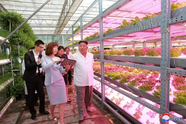 Ông Kim Jong-un tới thăm Học viện Khoa học Nông nghiệp Trung Quốc (Ảnh: Reuters)