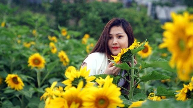 Giới trẻ đổ về Sa Pa chụp ảnh hoa hướng dương - 6