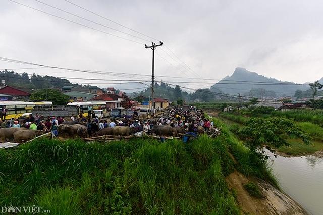 Chợ được mở vào mỗi sáng chủ nhật ngay gần chợ phiên Bắc Hà nên có rất đông người đến từ khắp các thôn, bản vùng cao của tỉnh Lào Cai và có khi có cả các tỉnh khác tụ hội về đây để tham quan, vui chơi.